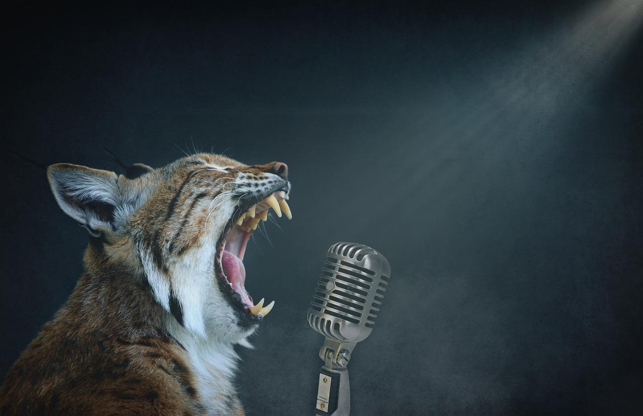 Un chat miaulant dans un microphone